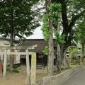 若宮神社(茅町)