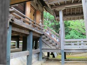 shirakami28.jpg