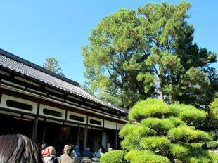 syuraku78.jpg