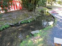 syuraku88.jpg