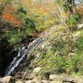 2015年 布滝の紅葉