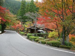 kagamino-18.jpg