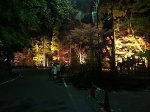 kagamino8.jpg