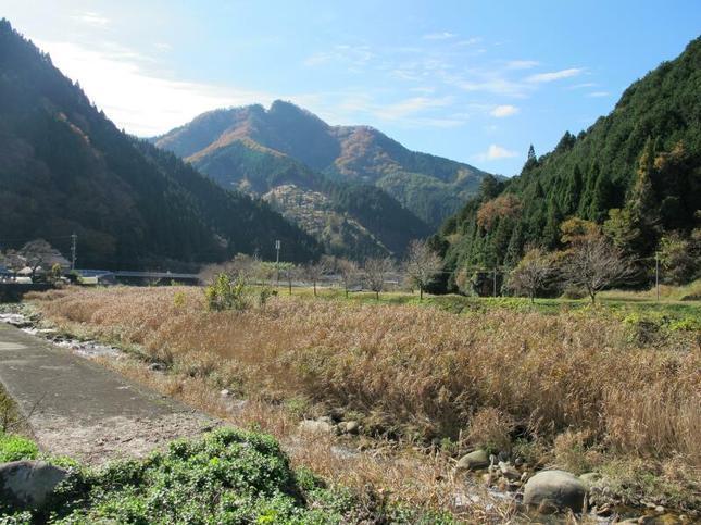 yahazu12.jpg