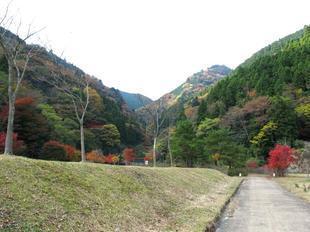 津川25.jpg