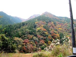 津川3.jpg