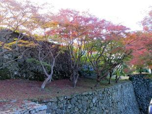 鶴山紅葉8.jpg