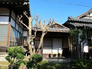daiouji24.jpg