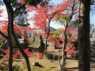 daiouji6.jpg