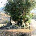 塞の神と八重絹喜八の墓(坪井上)