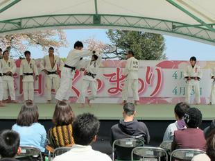 sakuramatsuri12.jpg