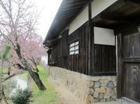 tateishi_4-6-10.jpg