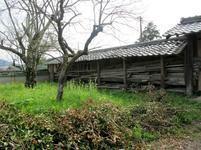 tateishi_4-6-25.jpg