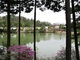 ueyama50.jpg