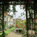 江原恵明会のバラ園