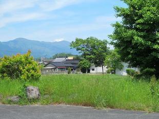takanoeki03.jpg