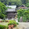 幻住寺(げんじゅうじ)のサツキ(美咲町)