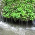 玉垂の滝(勝山)