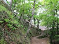 matsuyama12.jpg