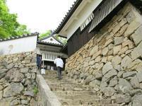 matsuyama61.jpg