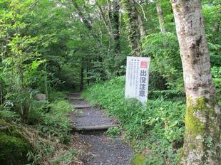 jyabuchi3.jpg