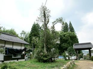 honkouji8-15-19.jpg
