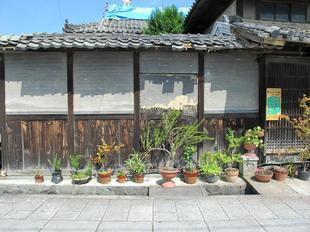 kaidou21.jpg