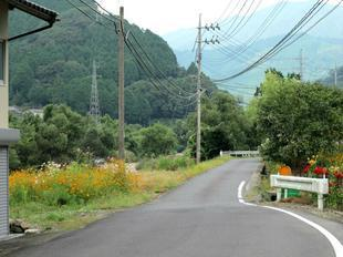 yoshimi11.jpg