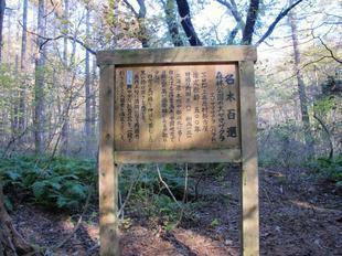 shinrinkouen13.jpg