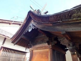 kozuga3.jpg