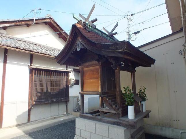 kozuga4.jpg