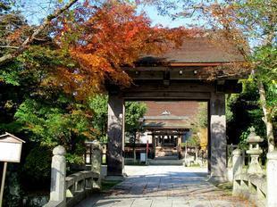 nakayama14.jpg