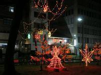 hiroshimairumi18.jpg