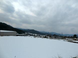 kamoeki9.jpg