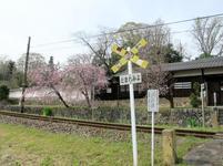 tateishi_4-6-39.jpg
