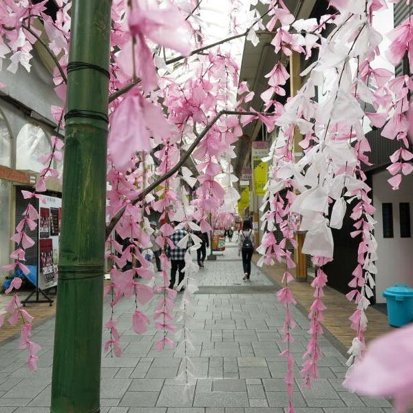2017年 津山中心商店街一帯にて雛めぐり