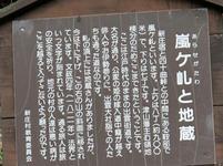 shinjyo45.jpg