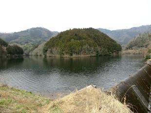 昭和池9.jpg