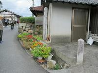 izumokaidoukawanabe8.jpg