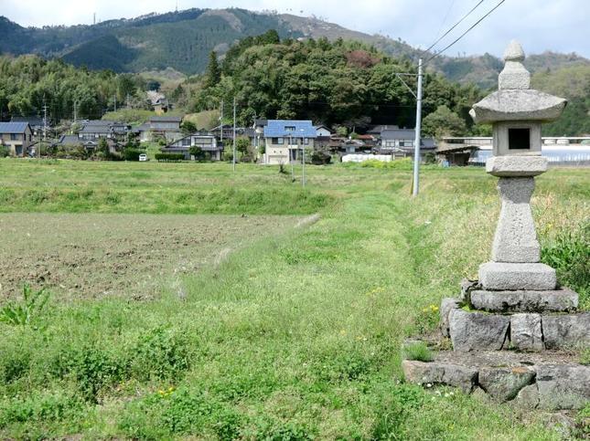 syoubuyama.jpg