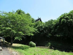honden_nakayama4.jpg
