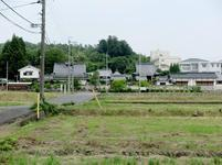 kokubunji2017-6-1.jpg