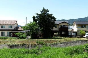 koujin-higashi2.jpg