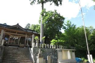 hirodo-ki-3.jpg
