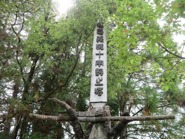 takanocyu4.jpg
