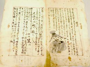 shiraishi15.jpg
