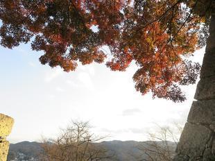 kakuzan33.jpg