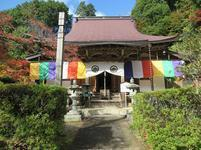 momiji_tera3.jpg