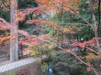sanomiya12.jpg