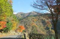 tsugawa11-23-6.jpg